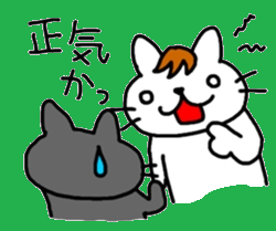 伊藤ネコ007