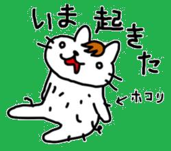 伊藤ネコ022