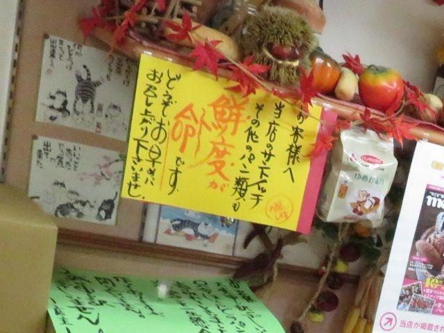 20160910_yunishikawa (10)