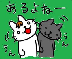 伊藤ネコ023
