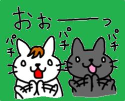 伊藤ネコ026