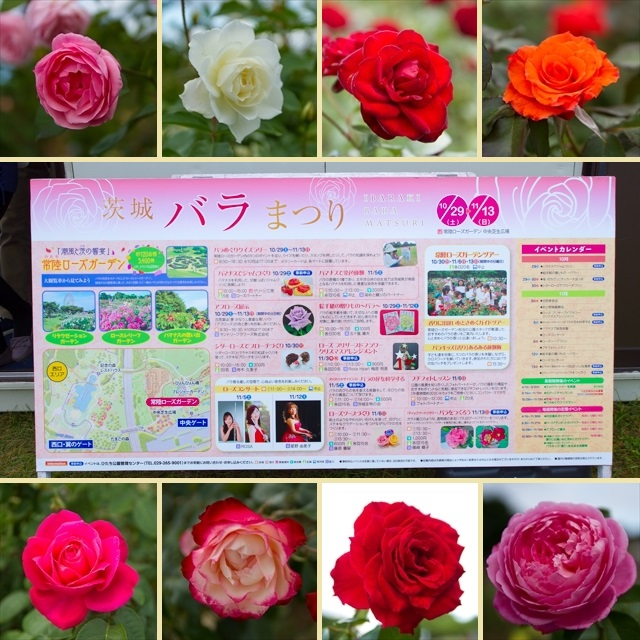 ひたちなかツー (40)