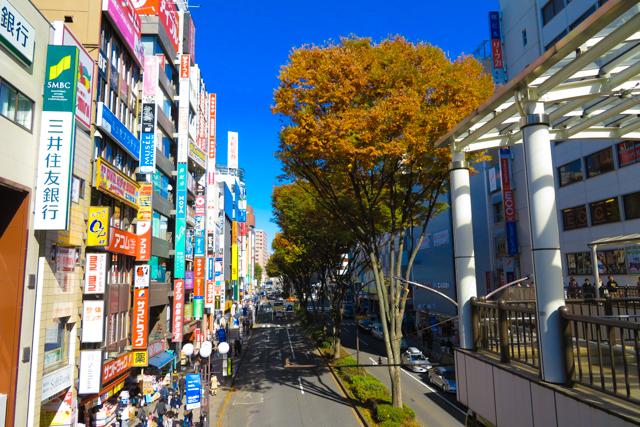 昭和記念公園 (9)