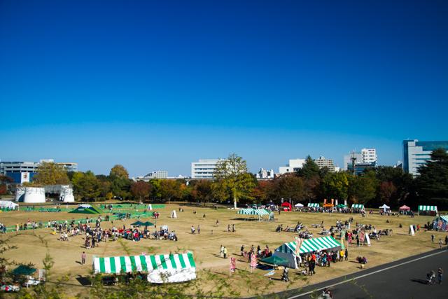 昭和記念公園 (14)