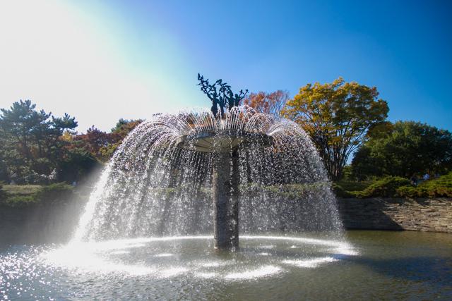 昭和記念公園 (20)