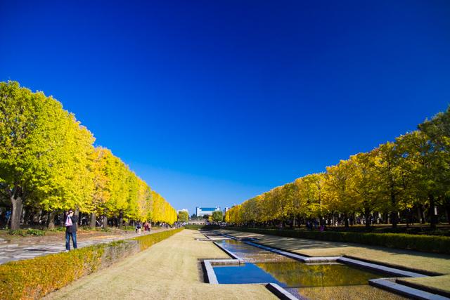 昭和記念公園 (21)