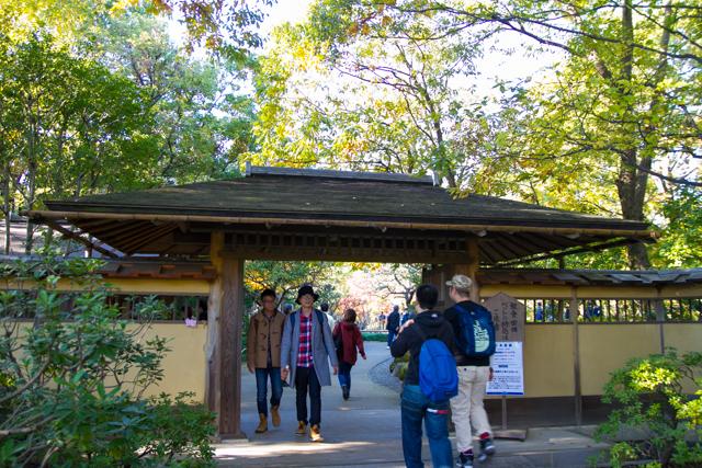 昭和記念公園 (31)
