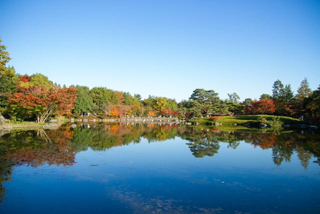 昭和記念公園 (34)