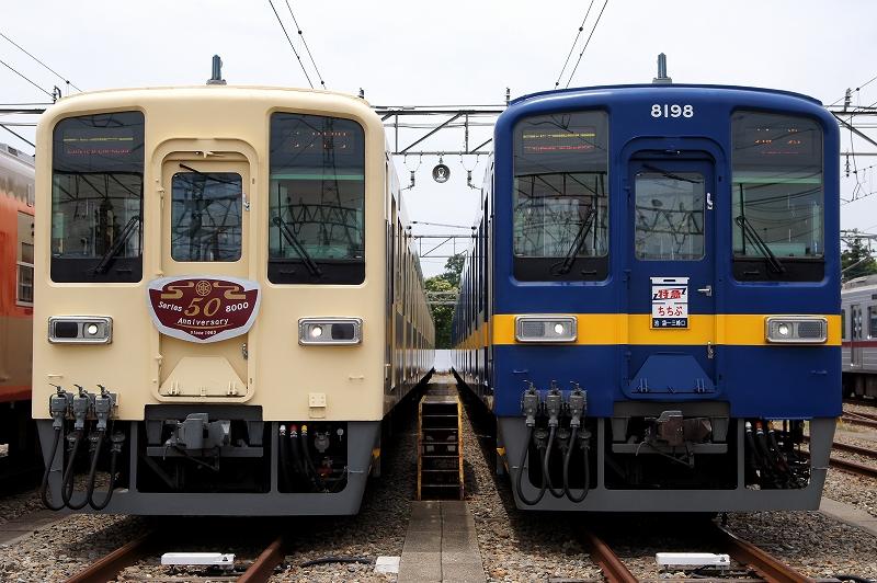 81111F 8198F