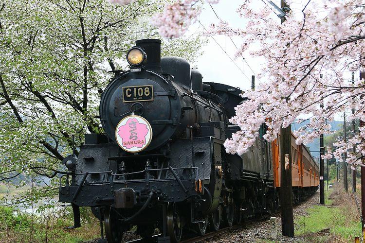 1604大井川鉄道① (11)fc2
