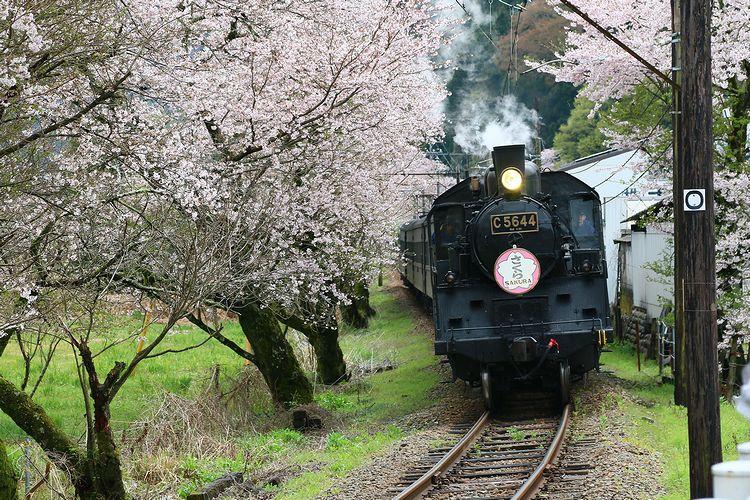 1604大井川鉄道① (45)fc2
