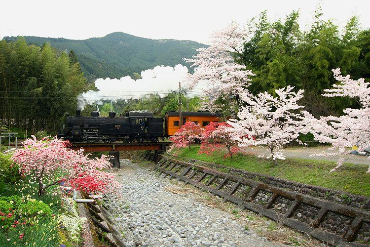 1604大井川鉄道⑥ (101)fc2