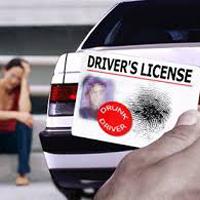 免許の停止