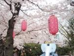 桜塚公園 (2)