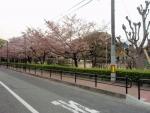 大曽公園 (1)