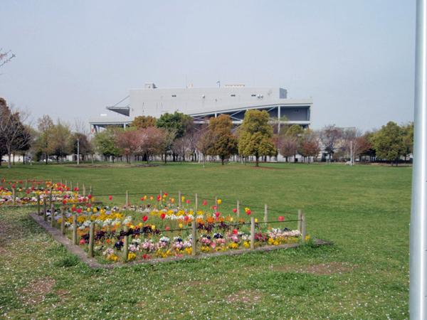 ふれあい緑地 芝生広場2 (5)