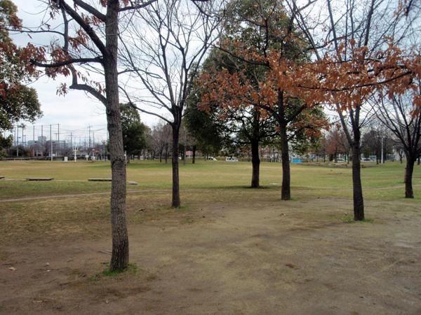 ふれあい緑地 芝生広場2 (7)