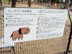ふれあい緑地 芝生広場2 (14)