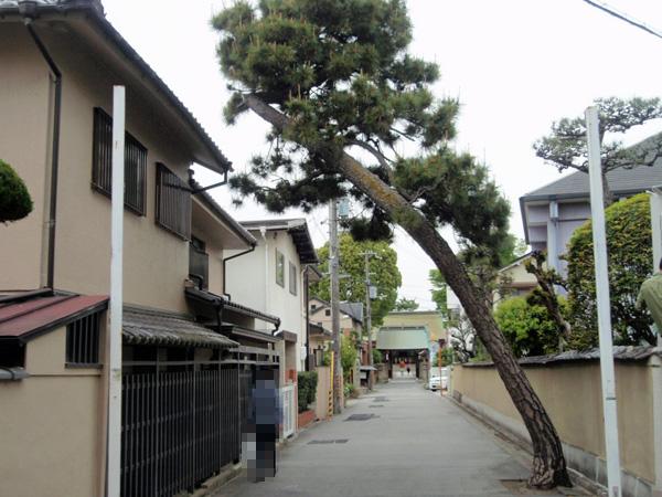 呉服神社 (2)