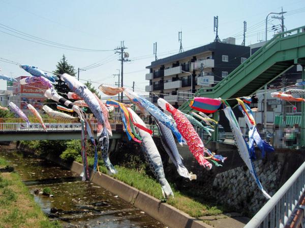 天竺川鯉のぼり 風舞フェア (1)