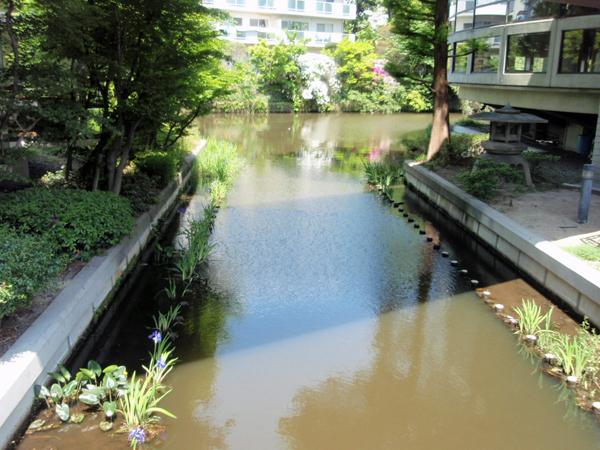 三義塚と魯迅 芦田ヶ池 (4)
