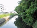 猪名川風致公園 (2)