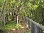 猪名川風致公園 (5)