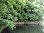 猪名川風致公園 (1)