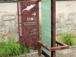 大阪大学総合学術博物館 (2)