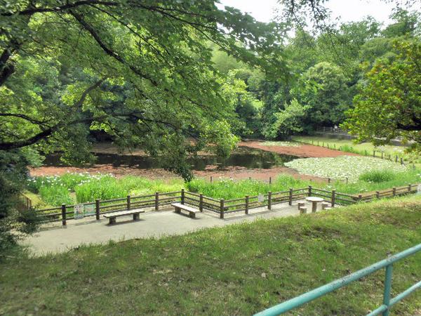 千里東町公園 (2)