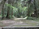 豊川 春日神社 (13)