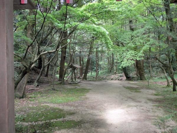 豊川 春日神社 (21)