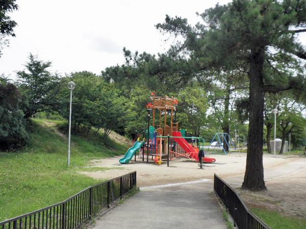 樫ノ木公園 (5)