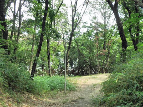樫ノ木公園 (3)