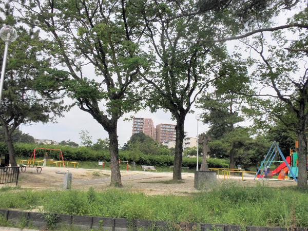 樫ノ木公園 (2)