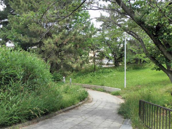 樫ノ木公園 (6)