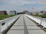 白橋(南園歩道橋) (3)