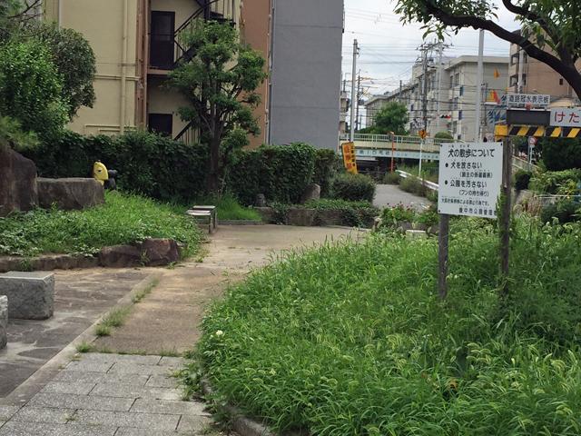 三田池公園 (3)