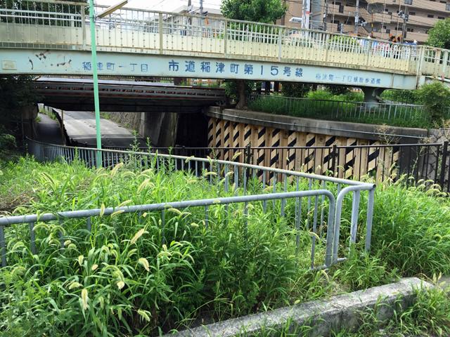 稲津町一丁目横断歩道橋 (4)