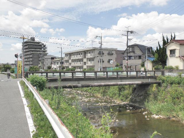 昭和橋 アドプト (1)