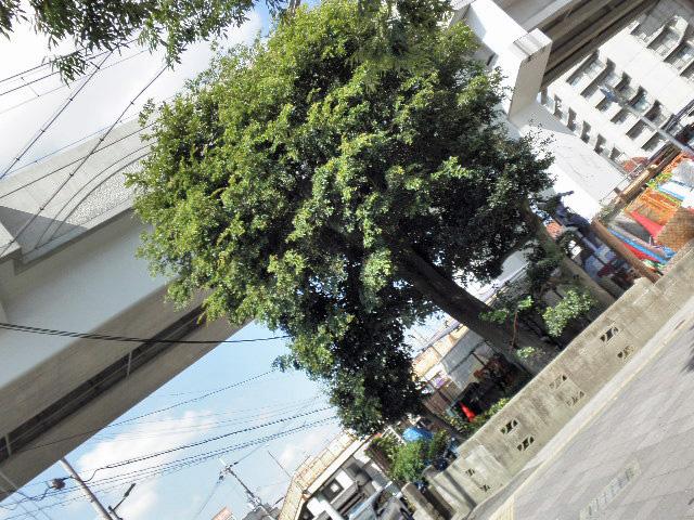 地蔵尊 マチカネくんマンホール (4)