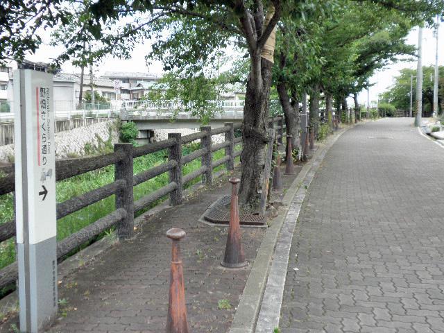 千里川 どんど橋 (1)