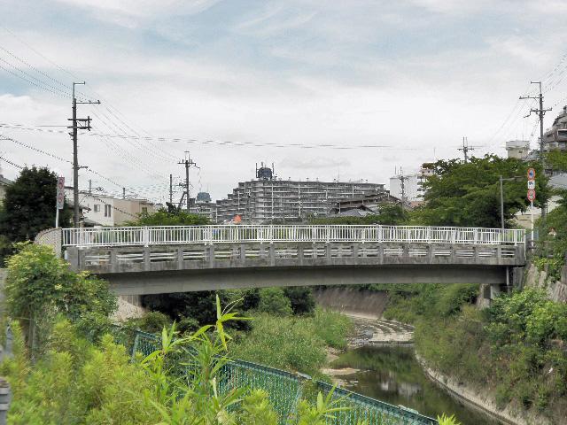 千里川 どんど橋 (2)