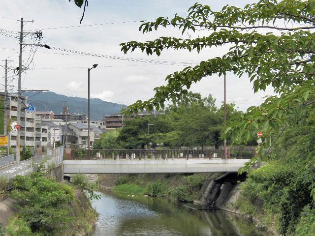 千里川 神鞍橋 (1)