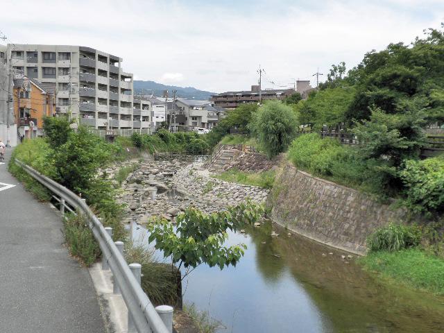 千里川 神鞍橋 (8)