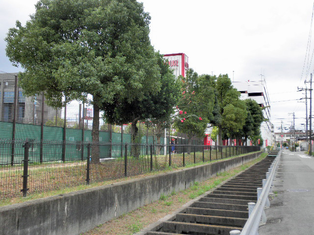ふれあい緑地 テニス場西 (3)