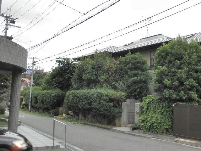 2016.5.18ten.まちかどとれじゃー曽根 (2)
