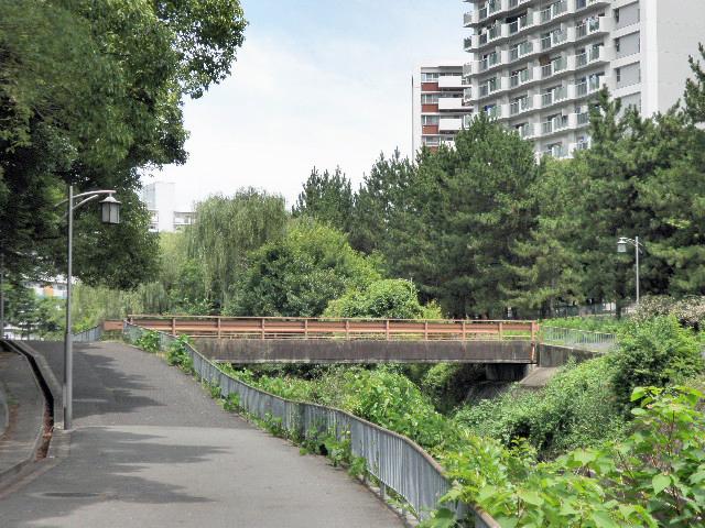 千里川 水田橋 (1)