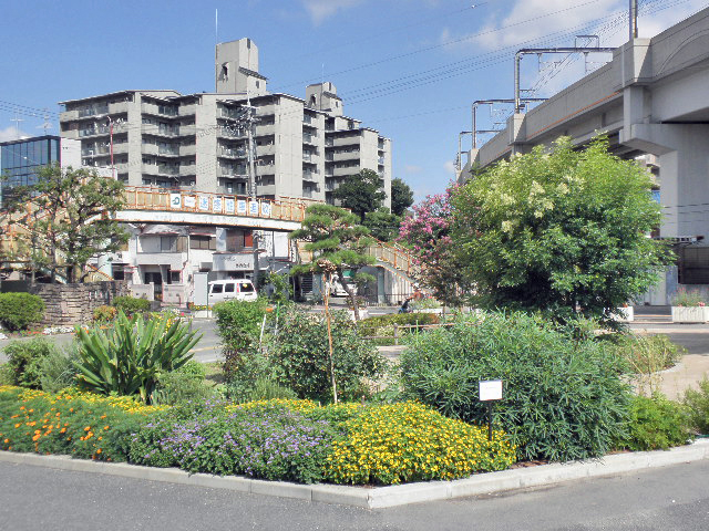花と緑の相談室豊島公園 (3)
