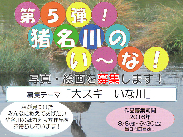 第5弾猪名川のい~な! (1)